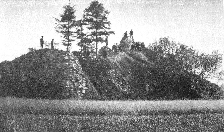 Zamek w Grżędach